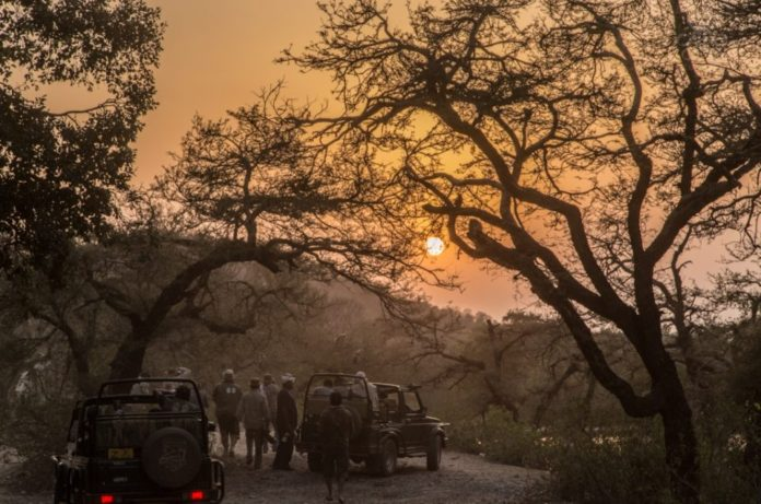 Ranthambore-tiger-reserve-KaynatKaziPhotography-2014-3448-960x636