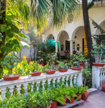 Viju-Krishna-Home-stay-Indore-Madhya-Pradesh-KaynatKazi-Photography-2016-www.rahagiri.com-52-of-62-960x636