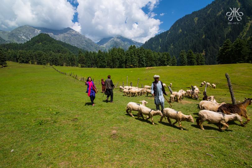 Pahalgam,Kashmir